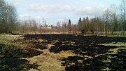 Požár trávy v Krásně na Sokolovsku.