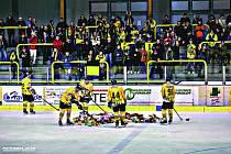 NEUVĚŘITELNÝCH 938 plyšáků naházeli fandové na ledovou plochu při prvním vstřeleném gólu sokolovského Baníku při víkendovém zápase proti Nymburku.