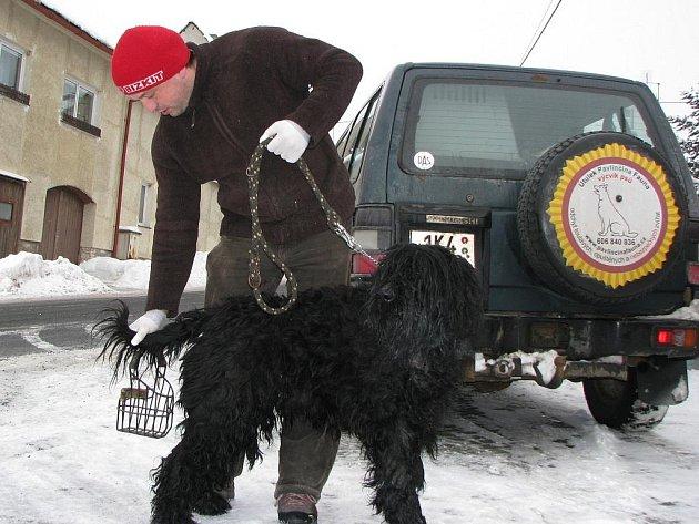 Provozovatel útulku Pavlínčina fauna ve Vítkově David Hrbáček (na snímku) tvrdí, že je schopen se o psy z Krajkové postarat. Zároveň nabízí obcím v regionu své služby.