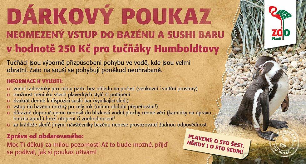 Sokolovská škola vybrala 125 tisíc korun. Posílá je zoologickým zahradám.