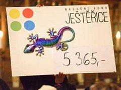 Nadační fond Ještěřice zahájil sérii vánočních benefičních koncertů. Další se uskuteční už nadcházející sobotu v kostele v Bublavě.