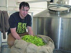 PŘÍPRAVA na vaření speciálního zeleného piva.