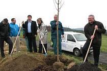 SLAVNOSTNÍ zasazení posledního stromu lipové aleje v Horním Slavkově.