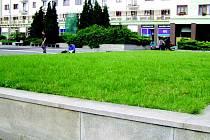 Vyvýšený trávník nabízí radnice v Sokolově k odpočinku