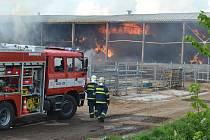 Při požáru haly na uskladnění sena se zranili dva hasiči.