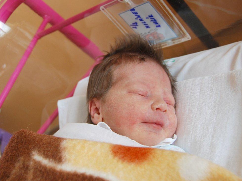 MILÁNEK HLINKA ze Sokolova se narodil 29. května