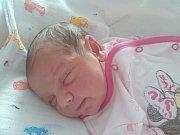 AMÁLKA PAVLÍNKA FERENCOVÁ ze Sokolova se narodila 4. března