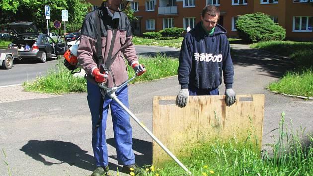 Klienti sociálního podniku Srdce a čin při sekání trávy v Sokolově. Za práci, kterou mohou dělat, jsou vděční.