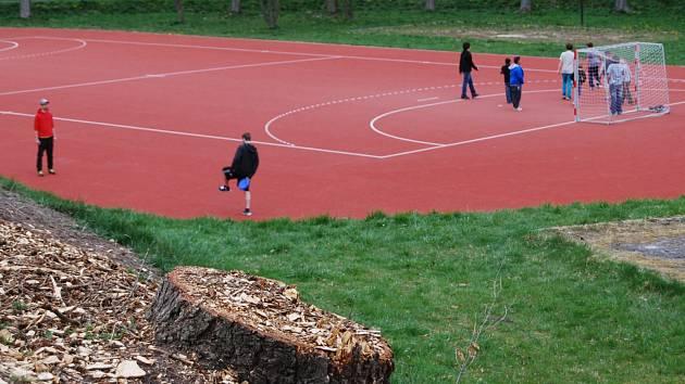 Dělníci začali v sokolovském Areálu zdraví a sportu s kácením stromů