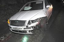 STŘETY SE ZVĚŘÍ. Řidič škodovky vběhlo do jízdní dráhy divoké prase. Škoda je 75 tisíc korun.