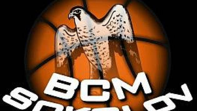 Logo BCM Sokolov