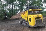 Revitalizace lesa pod sokolovskou rozhlednou  a kopcem Hard