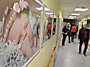 Novorozenecké oddělení sokolovské nemocnice