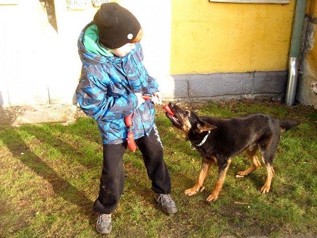 NA NÁKUP SANITKY pro zvířata chtěl přispět i desetiletý chlapec Ondra, který dělá radost i opuštěným psům přímo na stanici.