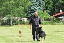 Oddělení služební kynologie Karlovarského kraje disponuje téměř třiceti psy rasy německý ovčák.