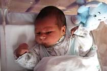 Vojtíšek Man z Chodova při narození měřil 51 cm a vážil 3,700 kg.