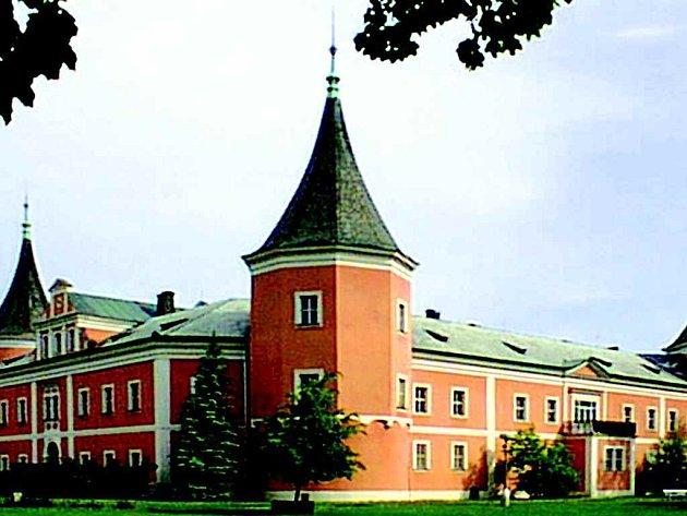 Knihovna zatím sídlí v sokolovském zámku