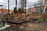 V centru Sokolova padly desítky stromů, bez povolení