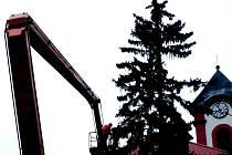 Zdobení vánočního stromu v Chodově.