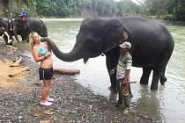 """LUCIE SI V INDONÉSII vyzkoušela i mytí slonů. """"Už tady mě napadlo se na Bali vrátit a stát se ošetřovatelkou slonů. Vrátím se určitě, ale spíš jako instruktorka potápění,"""" říká."""