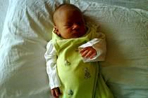 Matěj Holman narozený 2.9.2008, 3480 g a 49 cm v Sokolově.