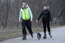 BRUSLIT se psy na in linové dráze v Sokolově je zákazané