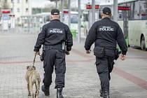 Hlídka se psem v okolí sokolovského nádraží