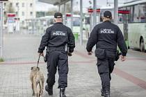 Hlídka městské policie na sokolovském dopravním terminálu.