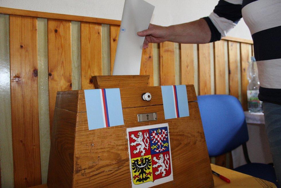 Volby do Evropského parlamentu v Přebuzi