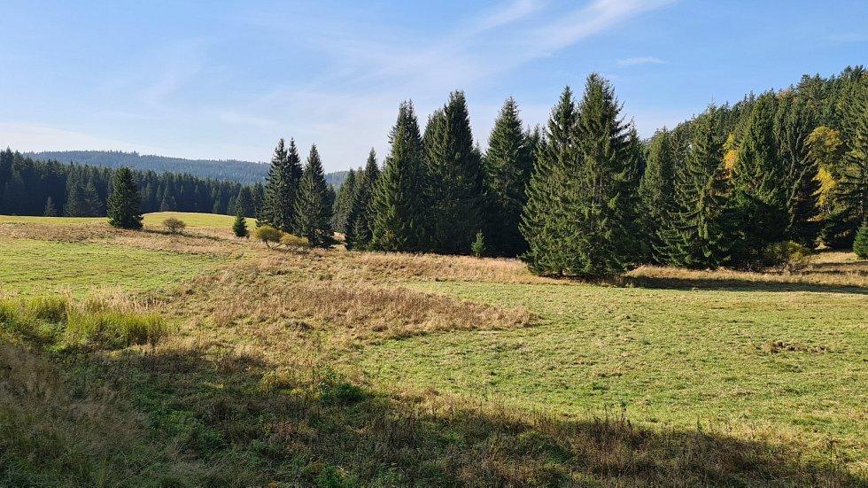 Výlet k ruinám kostela sv. Mikuláše u Hruškové.