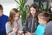 Zvířátka v domě dětí jsou dětem také během tábora k dispozici. Do ruky mohou vzít třeba i malého hada.