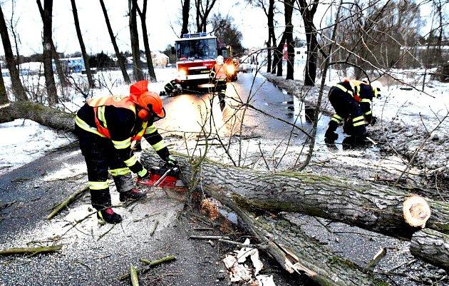 Silný vítr a sněžení. Hasiče zaměstnávají popadané stromy.