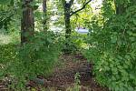 Nejstarší škola ve městě bude mít své hřiště