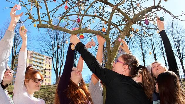 Velikonoční kraslice, které vyráběli žáci, zdobí strom v areálu šesté základní školy.