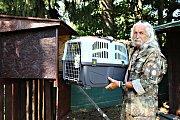 ZVÍŘECÍ BABYBOX v Záchranné stanici handicapovaných živočichů Drosera v krušnohorské Bublavě na Sokolovsku zachránil už dvacítku zvířat.