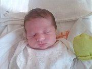 MATÝSEK HLADÍK z Mariánských Lázní se narodil 4. března