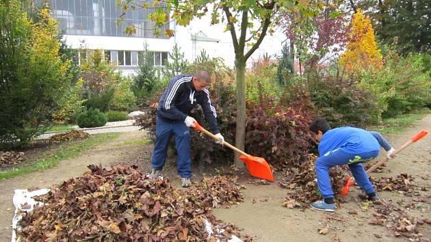Školáci uklidili zahradu seniorům v Dolním Rychnově.