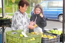 OBYVATELÉ Kynšperka si na farmářské trhy už zvykli. Nakoupit si tu kromě ovoce a zeleniny mohou třeba i místní med.