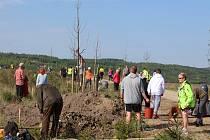 Sto rodin z Karlovarského kraje vysadilo u příležitosti 100. výročí vzniku republiky 100 stromů dubu zimního. Výsadba se uskutečnila v sobotu 28. dubna 2018 na březích nově vzniklého jezera Medard.
