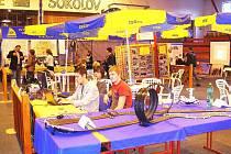 ISŠTE v současné době navštěvuje 1120 žáků, z toho 920 jich dochází do Sokolova a 200 do Královského Poříčí. Snímek pochází z listopadové výstavy Škola 2009, kde se zařízení prezentovalo.