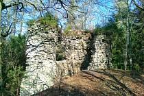 Zřícenina hradu Kynžvart.