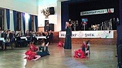 Šnekovský benefiční ples.