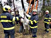 DOBROVOLNÍ HASIČI z Chodova zachraňují kromě lidských životů i ty zvířecí. Výjezdů přibylo.