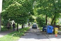Původní alej v ulici K.H.Máchy