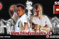 Mezinárodní mistrovství Švýcarska v Shinkyokushin karate
