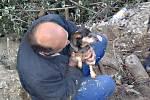 Záchrana psa v Kraslicích.