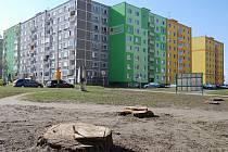 Zmíněná lokalita na sídlišti Vítězná.