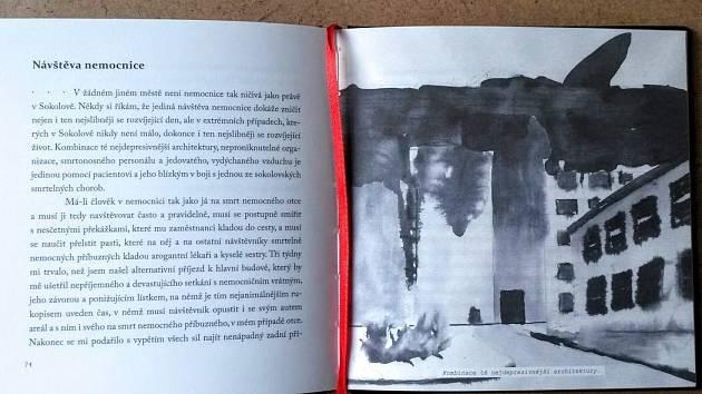 Kniha Sokolov autora Lukáše Beneše