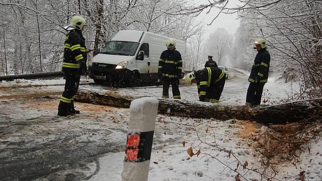POD TÍHOU sněhu padaly stromy na silnice. Na snímku likvidují hasiči z Kraslic padlý strom přes frekventovanou silnici vedoucí do Německa. Jen se štěstím nespadl strom na projíždějící auto.