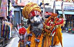 SNÍMEK autorky výstavy, Sádhú – hinduistický svatý muž.